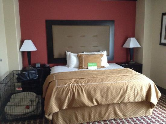 Best Bedroom With Room For Dog Crate Picture Of La Quinta Inn With Pictures