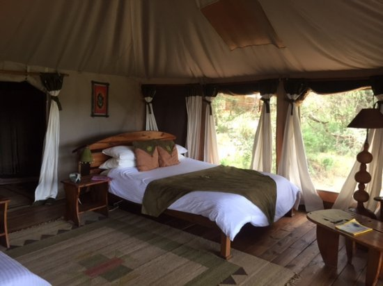Best Photo1 Jpg Picture Of Elephant Bedroom Camp Samburu With Pictures