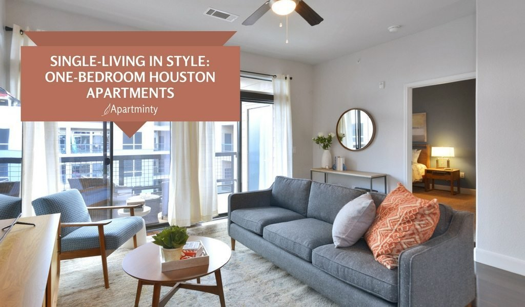 Best Single Living In Style One Bedroom Apartments In Houston With Pictures