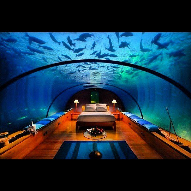 Best Underwater Bedroom In The Maldives Let S Go With Pictures