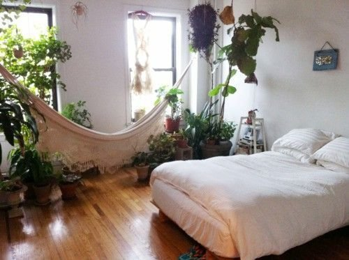 Best Free Technology For Teachers Hammocks Plants And Bedrooms With Pictures