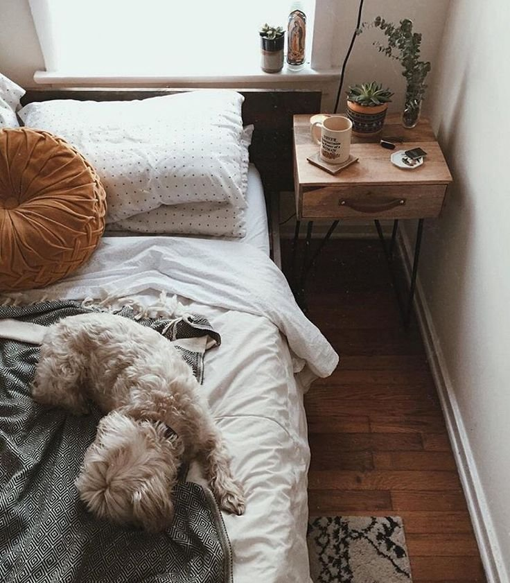 Best 20 Best Ideas About Urban Outfitters Room On Pinterest Urban Outfitters Bedroom Urban With Pictures