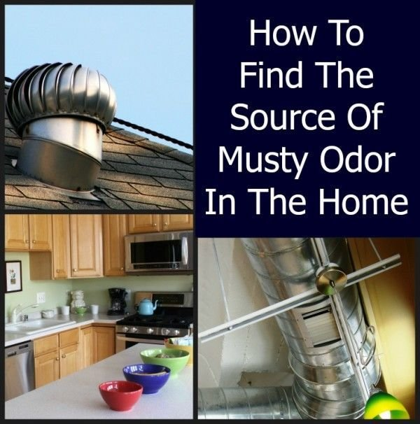 Best How To Find The Source Of Musty Odor In The Home Clean It Household Odors Pinterest Home With Pictures