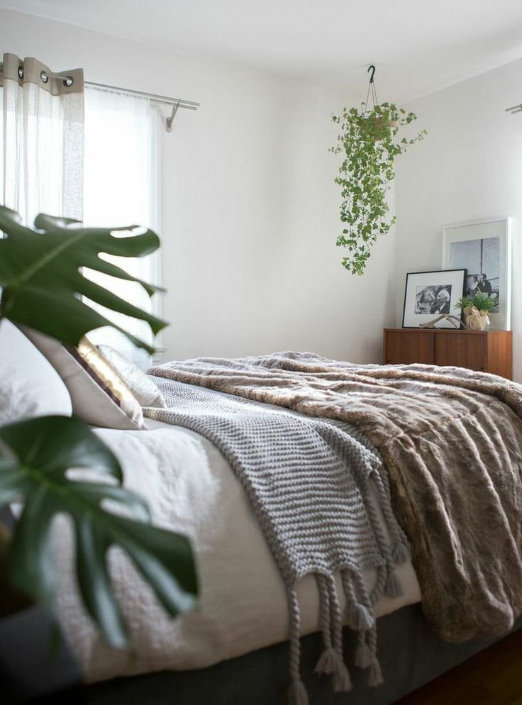 Best 1000 Ideas About Bedroom Plants On Pinterest Living With Pictures