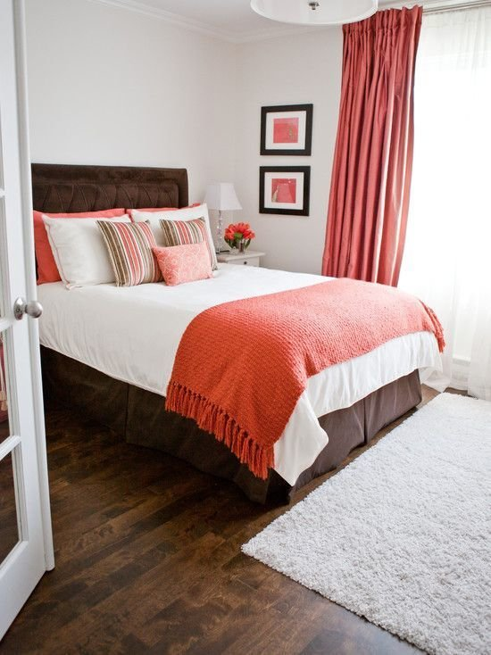 Best Bedroom Design Transitional Spare Room Ideas With Elegant With Pictures