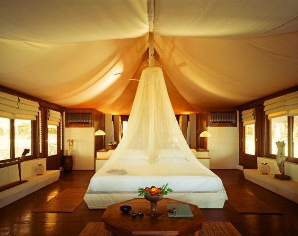 Best 107 Best Images About Safari *D*Lt Bedroom On Pinterest With Pictures
