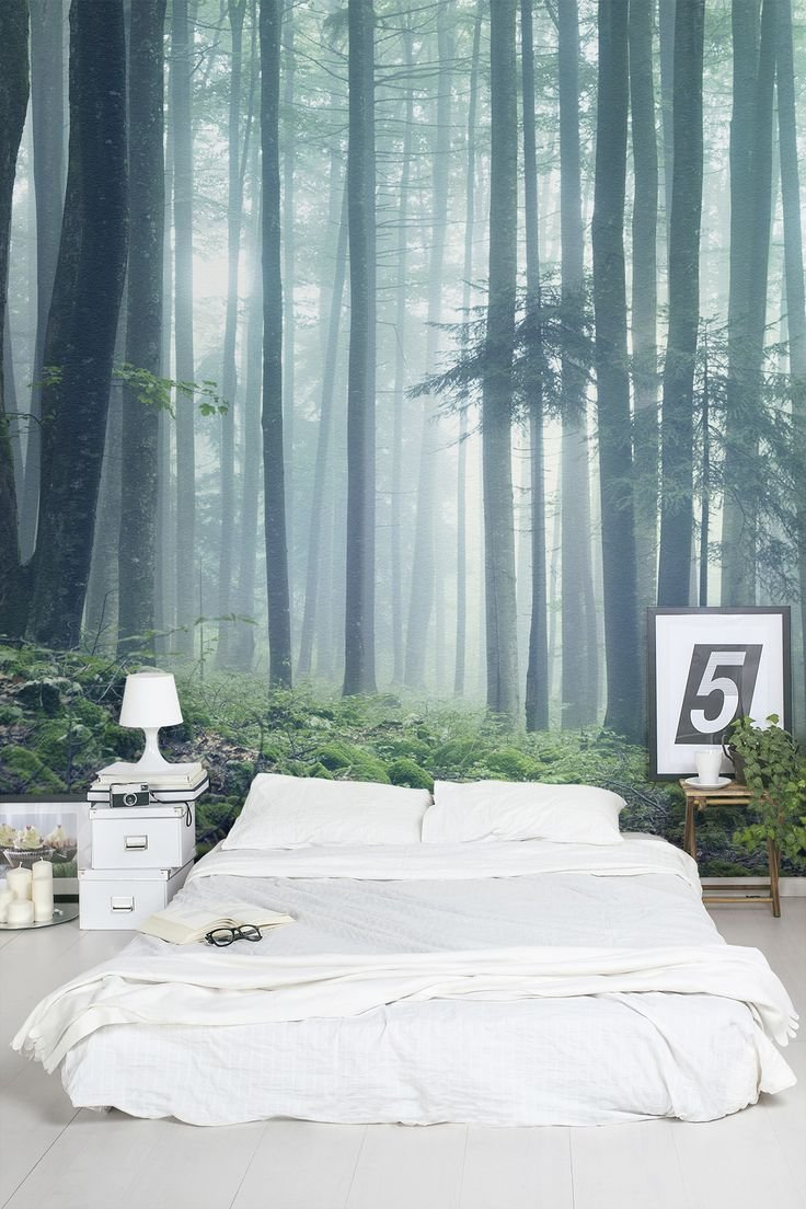 Best 25 Forest Wallpaper Ideas On Pinterest With Pictures