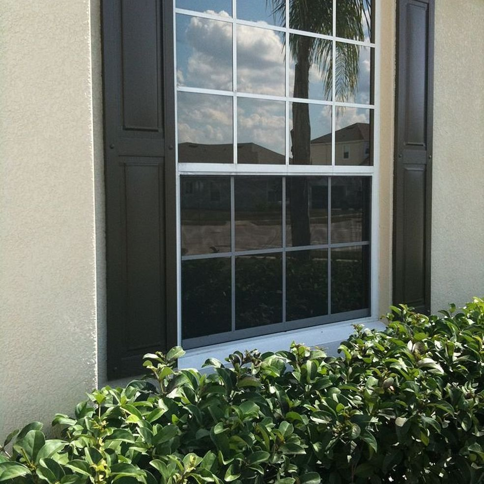 Best We Had All Of The Windows On The Front Of Our House Tinted With Pictures