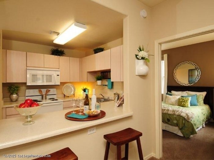 Best Pala Mesa Apartments In Mesa Arizona With Pictures