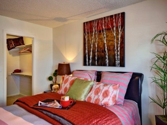 Best 1 Bedroom Apartments In Lakewood Colorado College Rentals With Pictures