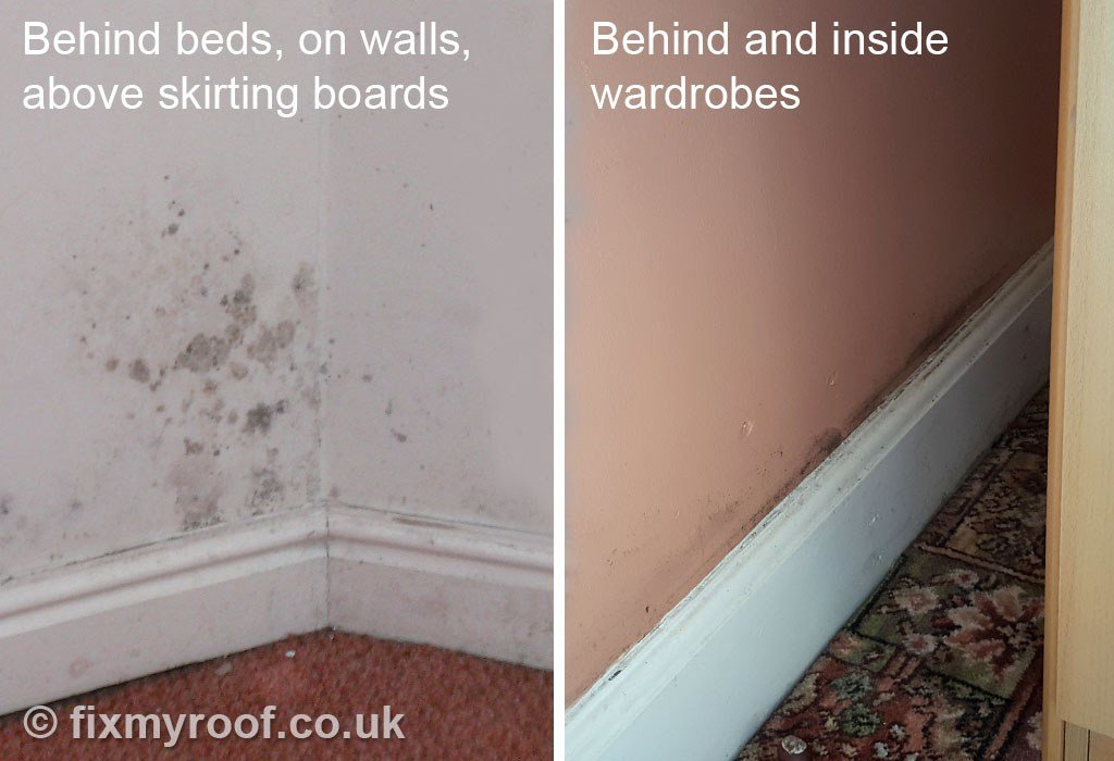 Best How To Cure Condensation Free Top 10 Tips To A With Pictures