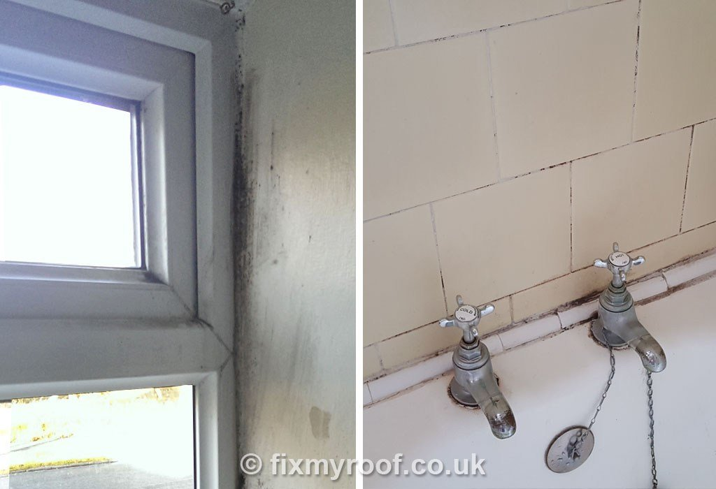 Best How To Stop Damp On Bedroom Ceiling Www Indiepedia Org With Pictures