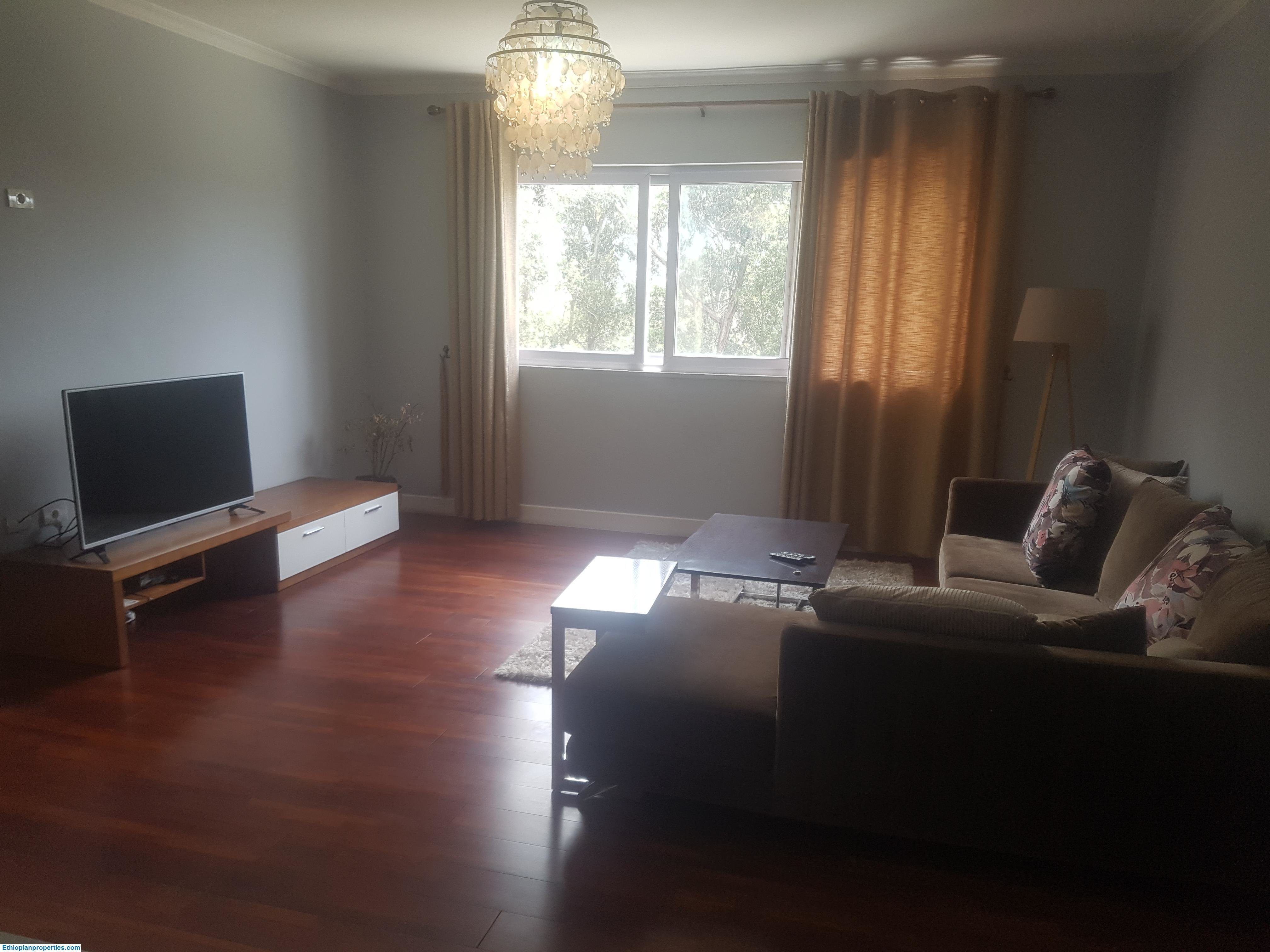 Best 2 Bedroom Furnished Apartment For Rent In Bole With Pictures