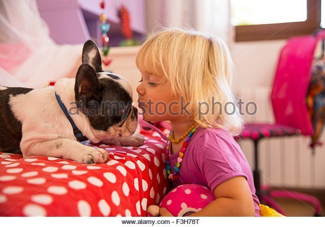 Best Girl Kissing Dog Stock Photos Girl Kissing Dog Stock With Pictures