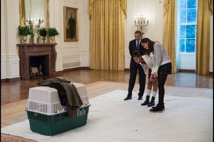 Best Republican Staffer Criticized For Comments About Obama Daughters With Pictures