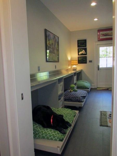 Best Top 60 Best Dog Room Ideas Canine Space Designs With Pictures