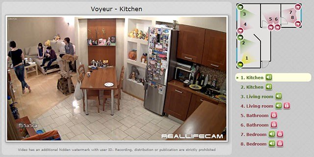 Best 6 Creative Uses For Wireless Surveillance Cameras In Your Home With Pictures