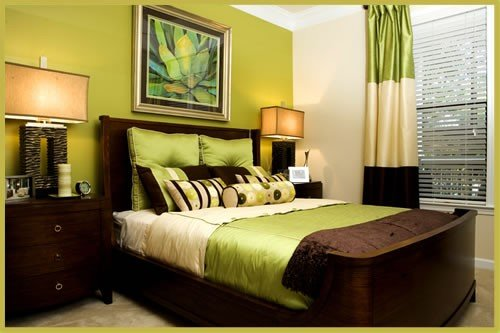 Best Eye For Design Decorating With The Brown Lime Green With Pictures