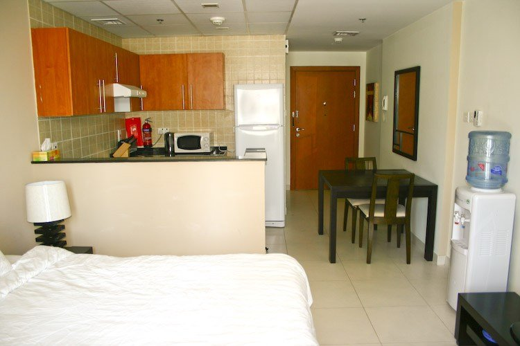 Best One Bedroom Apartment For Rent In Dubai Online Information With Pictures