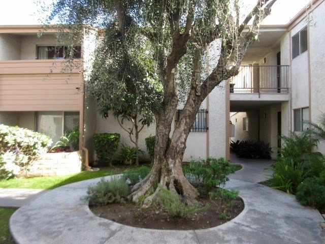 Best 1 Bedroom Apartment For Rent In Long Beach Signal Hill With Pictures