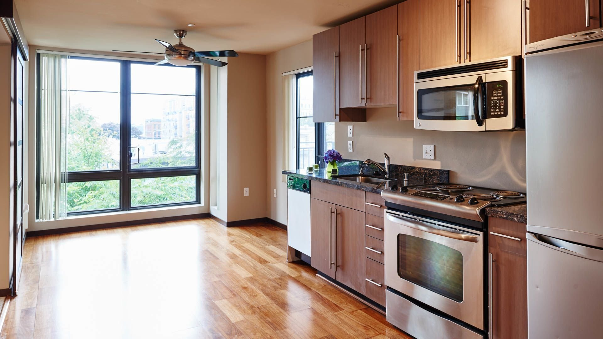 Best Apartments Sidney Apartments Seattle For Excellent With Pictures