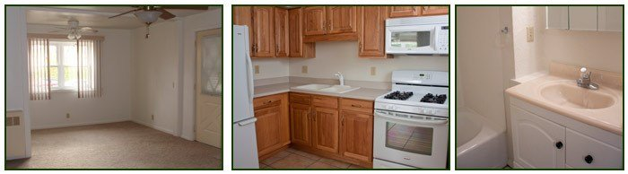 Best One Bedroom Apartment Home For Rent Fort Wayne In With Pictures