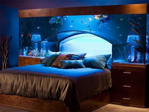 Best Top 7 Aquarium Designs For Your Interior Design With Pictures