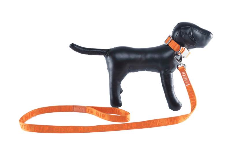 Heron Preston がペットブランドとタッグを組み愛犬家に向けたドッグ用ストリートウェアをリリース ヘロン プレストン