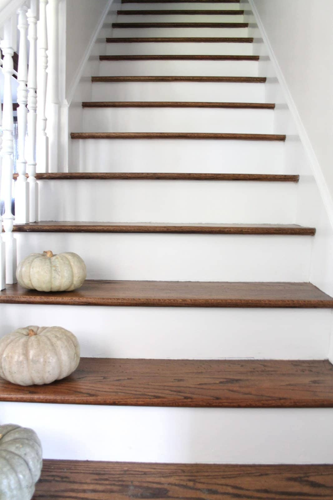 Stair Makeover Treads And Risers Exposed   White And Dark Wood Stairs   Medium Dark   Foyer   Stair Railing   Indoor   Traditional