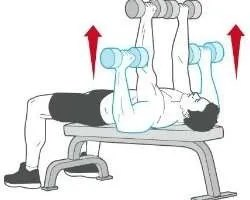 Ultimate Dumbbell Exercises Routine To Build Chest Muscles