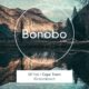 British DJ, Bonobo, gears up for two performances in South Africa