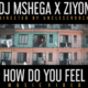 DJ Mshega ft Ziyon How Do You Feel music video