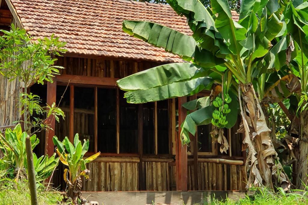 Top 10 homestay Đồng Nai Biên Hòa đẹp giá rẻ: trung tâm + ngoại thành