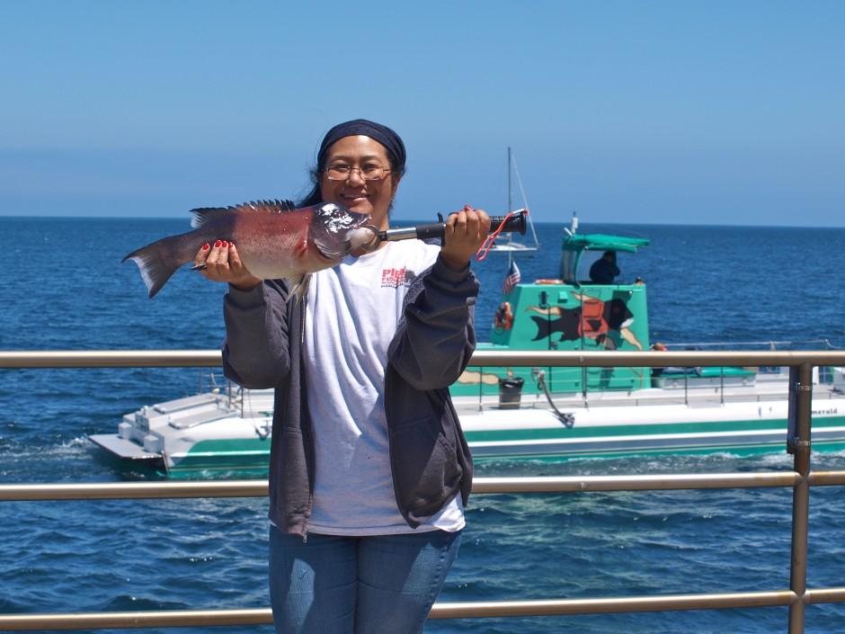 2013 Bait Best Rock Fishing