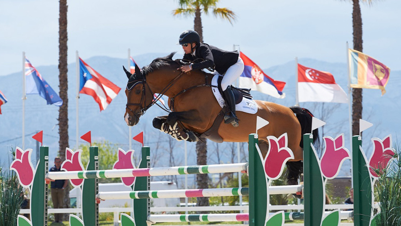 16 Year Old Weg Horse Finally Wins His First Grand Prix