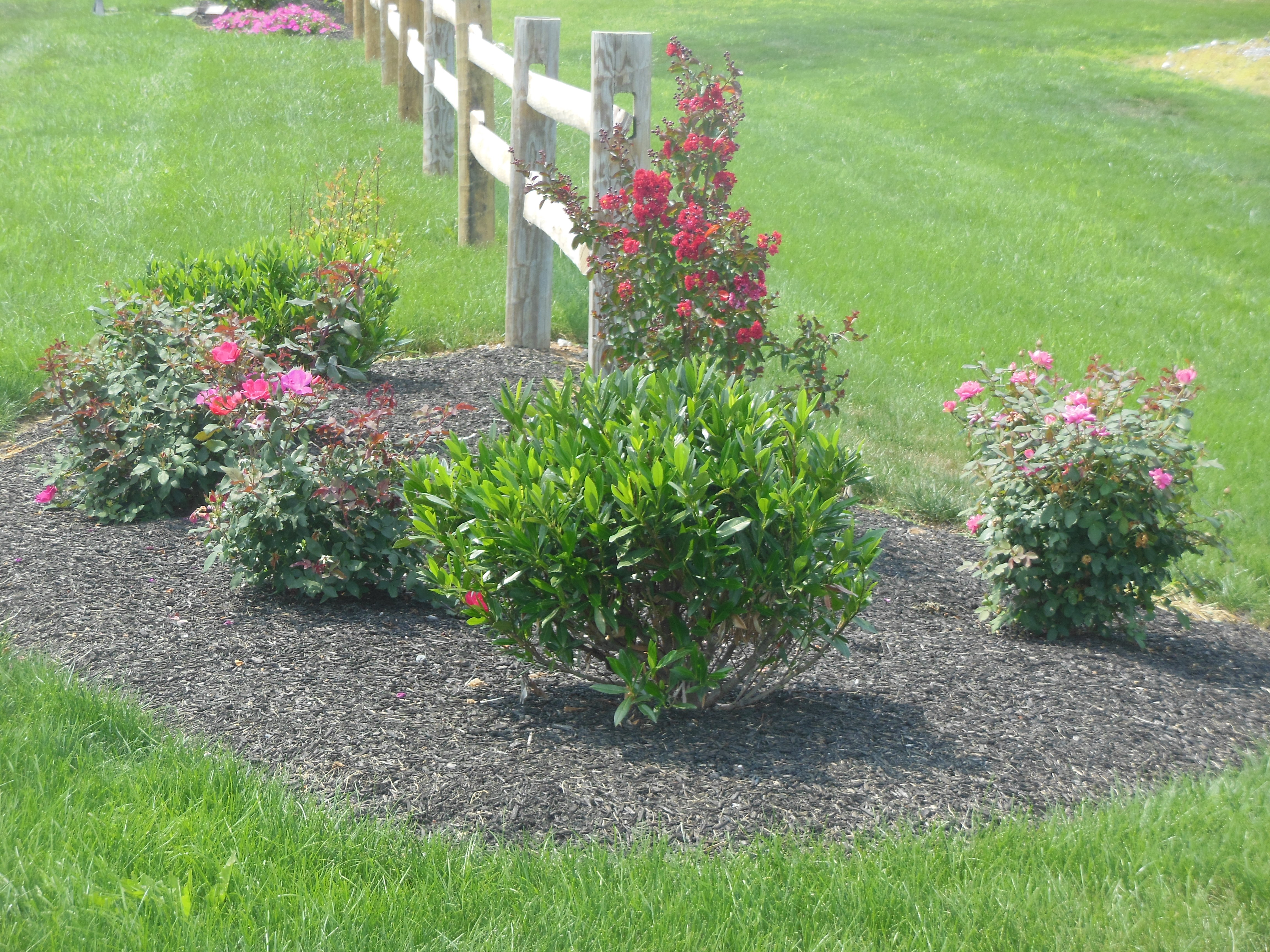 Lawn Landscaping Care
