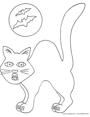 cat color page # 55