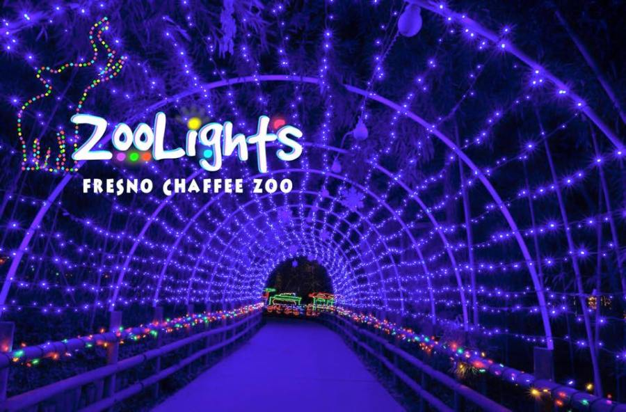 fresno zoo christmas lights 2017 christmaswalls co