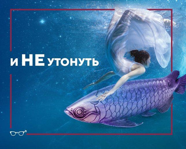 Cara jatuh cinta dengan ikan jantan, foto