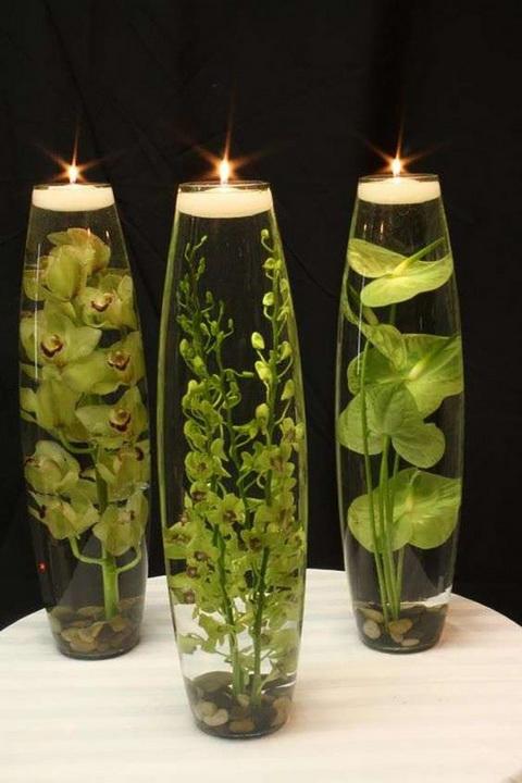 Les produits d'origine sont obtenus à partir d'algues artificielles et de lunettes longues ou de Vaz.