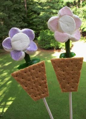 S'mores Flower Pot Pops