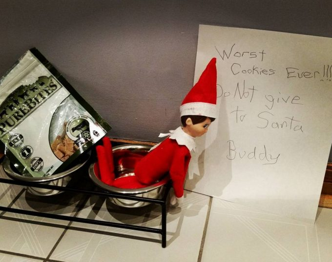 Worst Cookies Ever - Dog Food - Elf on the Shelf