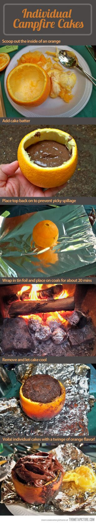 Individual Campfire Cakes...these are the BEST Camping Recipes!