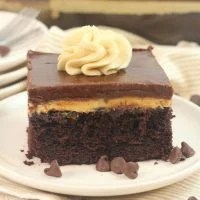 Chocolate Peanut Butter Texas Sheet Cake