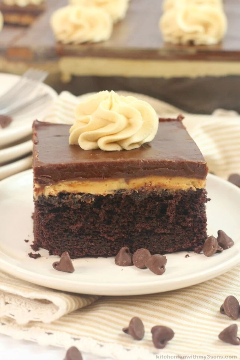 chocolate peanut butter texas sheet cake on a white plate