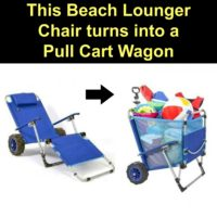 2 in 1 Beach Lounger Wagon