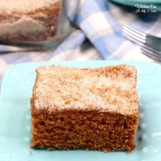 Snickerdoodle Crazy Cake is a yummy take on those depression cakes everyone loves. What makes it so crazy? It's got no eggs, milk or butter!