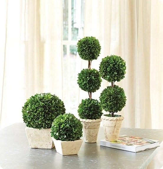 Diy Moss Ball Topiary Knockoffdecor Com