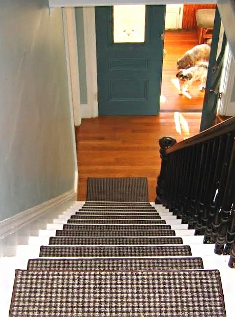Tahoe Ii Dog Assist Carpet Stair Treads   High Traffic Carpet For Stairs   Traditional   Textured   Family Room   Middle Open Concept   Runners