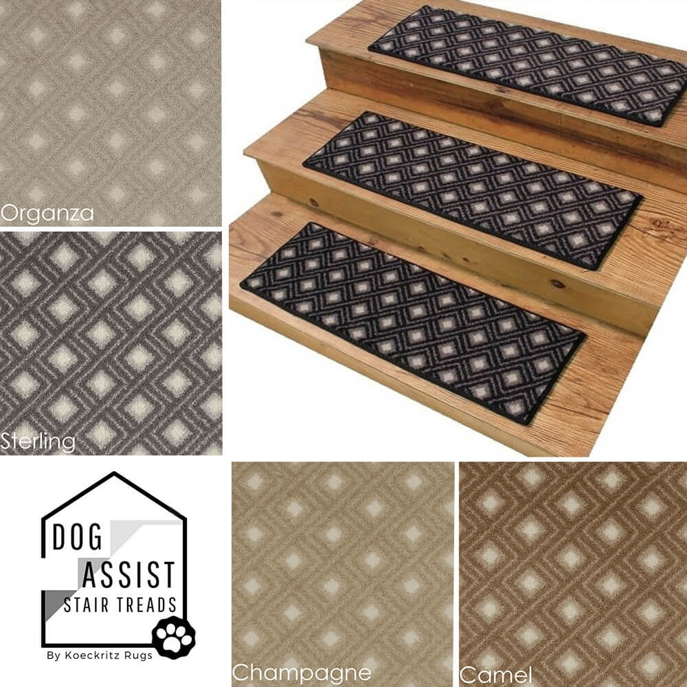 Diamante Ii Dog Assist Carpet Stair Treads | Stairs With Carpet Treads | Oak | Semi Circle | Outdoor Carpet | Laminate | Turquoise